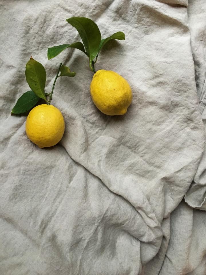 Lemon tart lemon pair